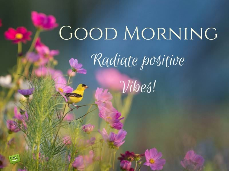 Good Morning. Radiate positive vibes!