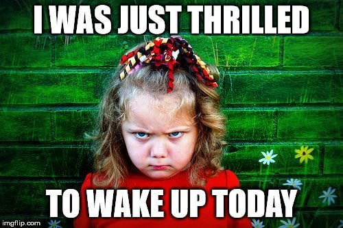 Thrilled To Wake Up Funny Good Morning Meme