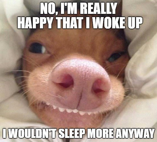 No, I'm really happy that I woke up, I wouldn't sleep more anyway...