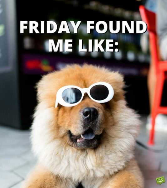 Thank God it's Friday! | Funny Friday Stuff to Share