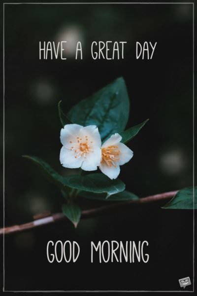 Have a great day. Good Morning.