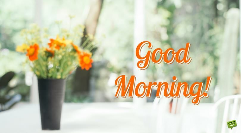 Good Morning Orange Flowers : Uplifting good morning quotes to start on the bright side