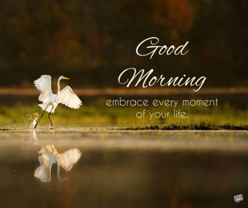 Good Morning. Embrace every moment of your life.