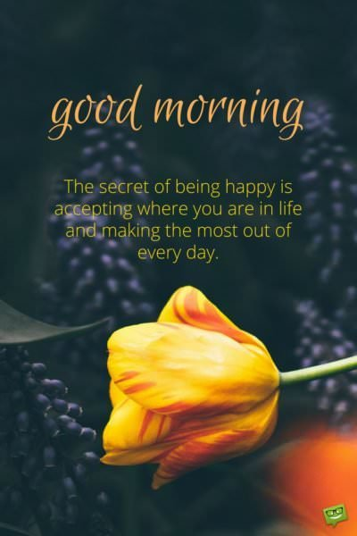 Good morning. The secret of being happy is accepting where you are in life and making the most out of everyday.