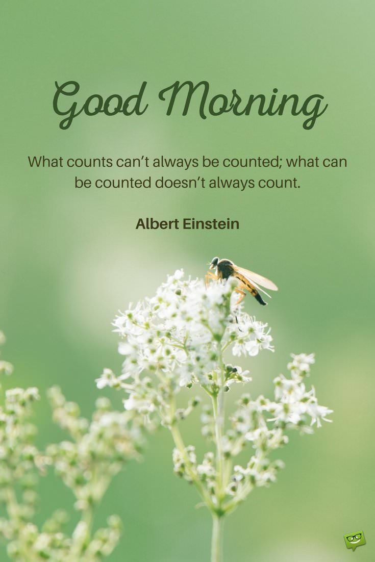 Good Morning Quotes Einstein : Fresh inspirational good morning quotes for the day part