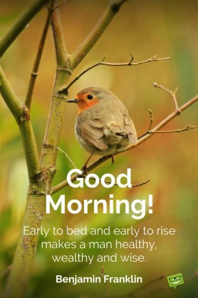 Good Morning. Early to bed and early to rise makes a man healthy, wealthy and wise. Benjamin Franklin