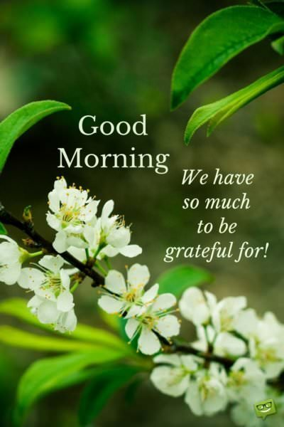 Good morning. We have so much to be grateful for!