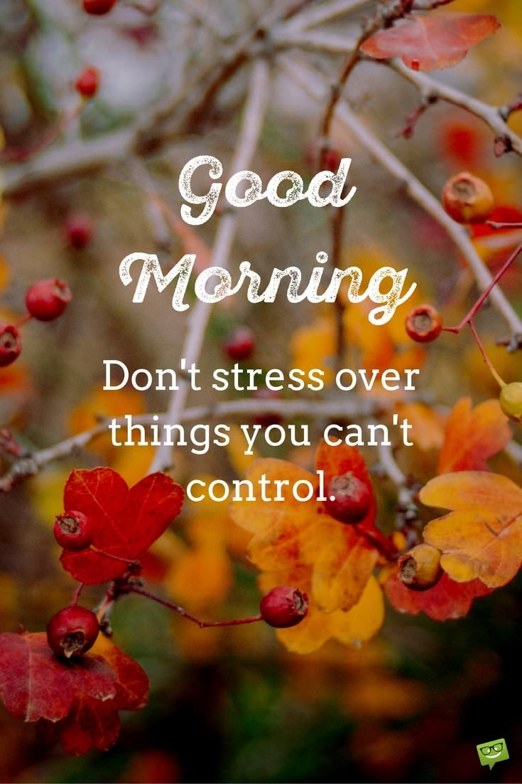 Fresh inspirational good morning quotes for the day get on the more good morning quotes voltagebd Choice Image