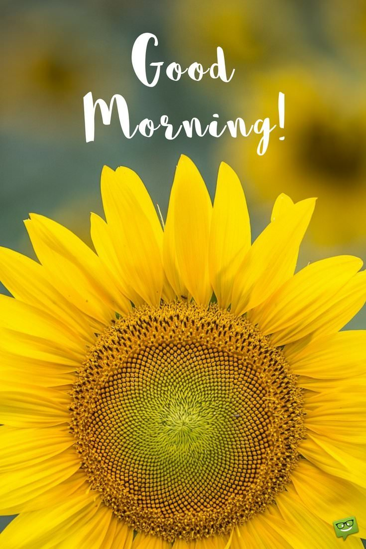 Fresh Inspirational Good Morning Quotes for the Day - Part 2