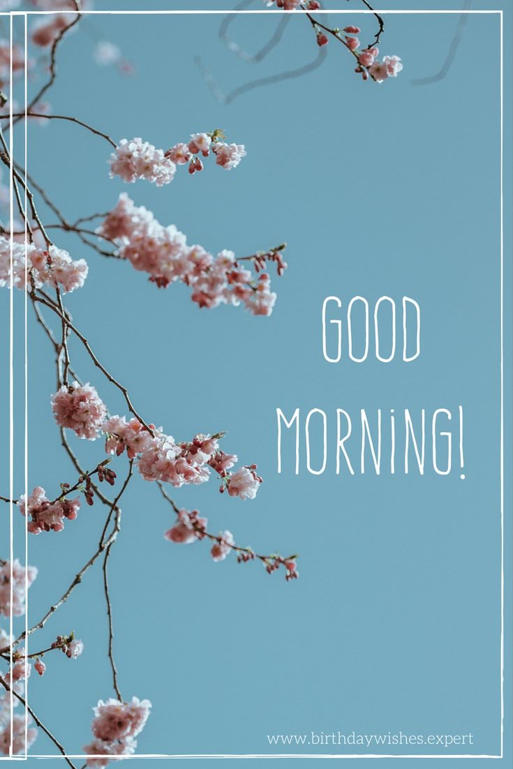 Fresh Inspirational Good Morning Quotes for the Day - Part 3