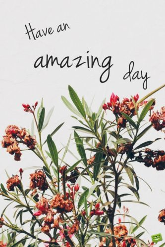 Have an amazing day.