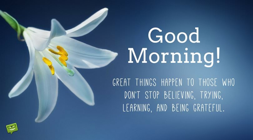 Good Morning. Great things happen to those who don't stop believing, trying, learning and being grateful.