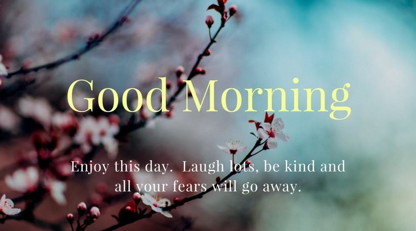 Good Morning. Enjoy this day. Laugh lots, be kind and all your fears will go away.