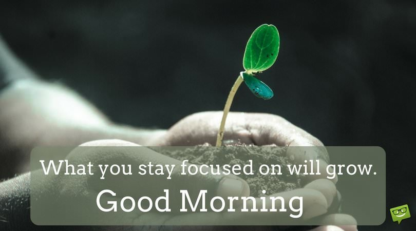 What you stay focused on will grow. Good Morning.