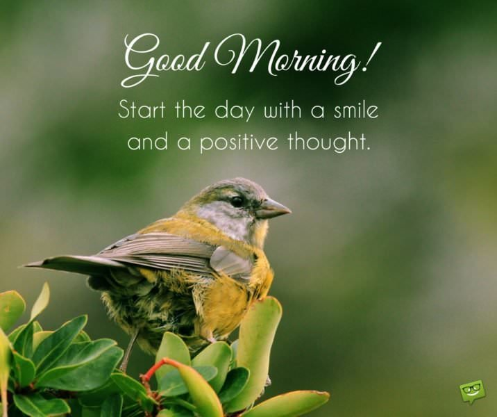 Good Morning! Start the day with a smile and a positive thought.