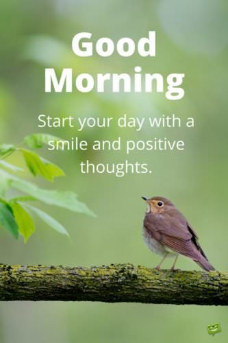 Good Morning. Start your day with a smile and positive thoughts.