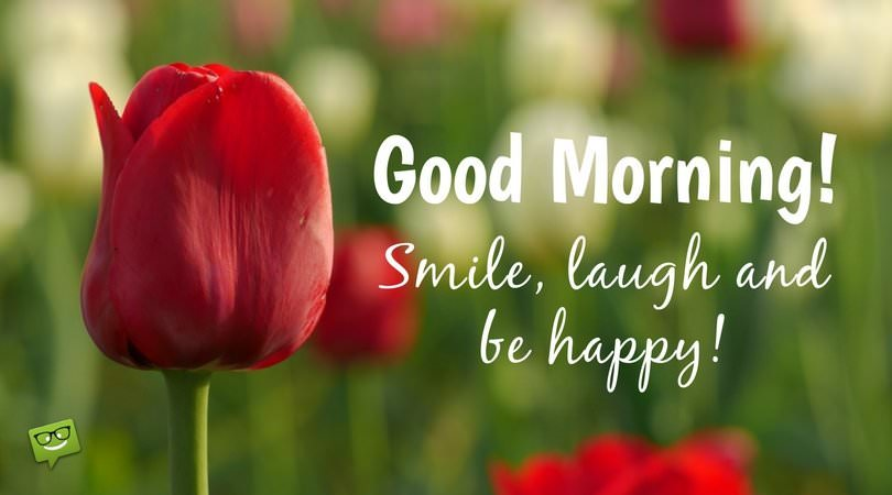 Good Morning! Smile, laugh and be happy!