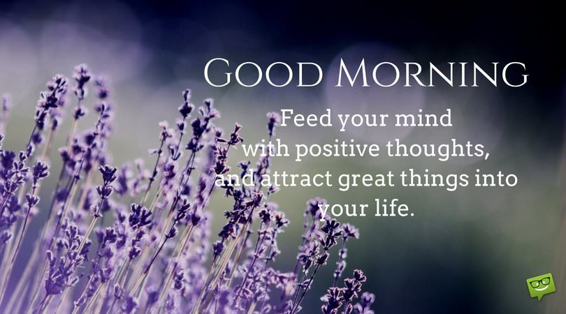 Good Morning Feed Your Mind With Positive Thoughts And Attract Great Things In Life