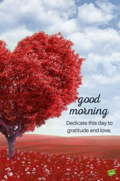 Good morning. Dedicate this day to gratitude and love.