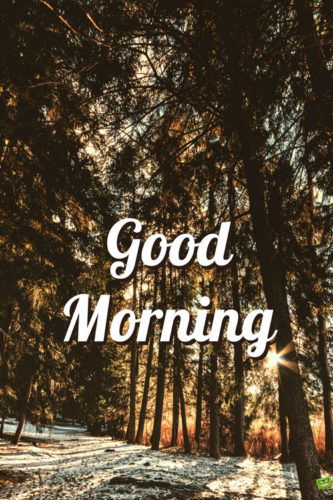 Fresh Inspirational Good Morning Quotes for the Day | Get