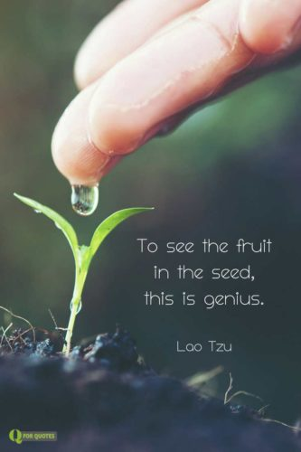 To see the fruit in the seed, this is genius. Lao Tzu.