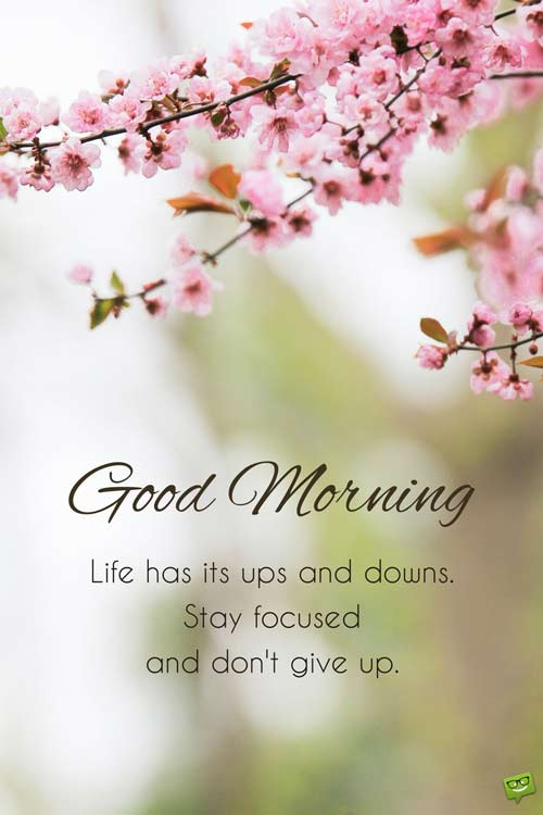 Fresh Inspirational Good Morning Quotes For The Day Get On The