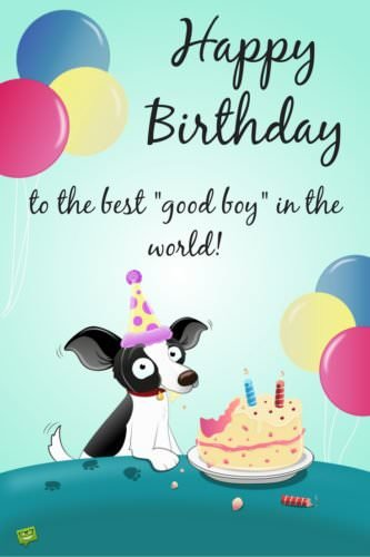 "Happy Birthday to the best ""good boy"" in the world!"
