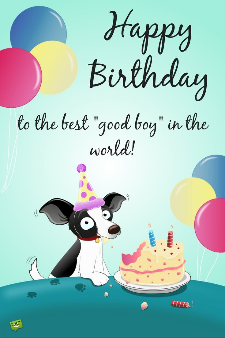 Heart touching cute wishes for your dogs or cats birthday happy birthday to the best good boy in the world kristyandbryce Choice Image