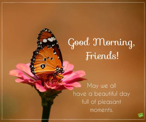Good morning, friends! May we all have a day full of pleasant moments.