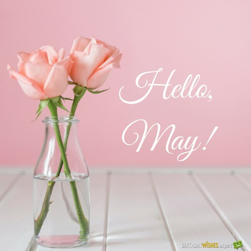 Hello, May | Quotes About Spring in Bloom