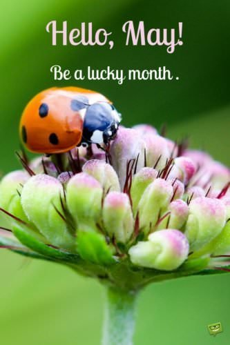 Hello, May! Be a lucky month.