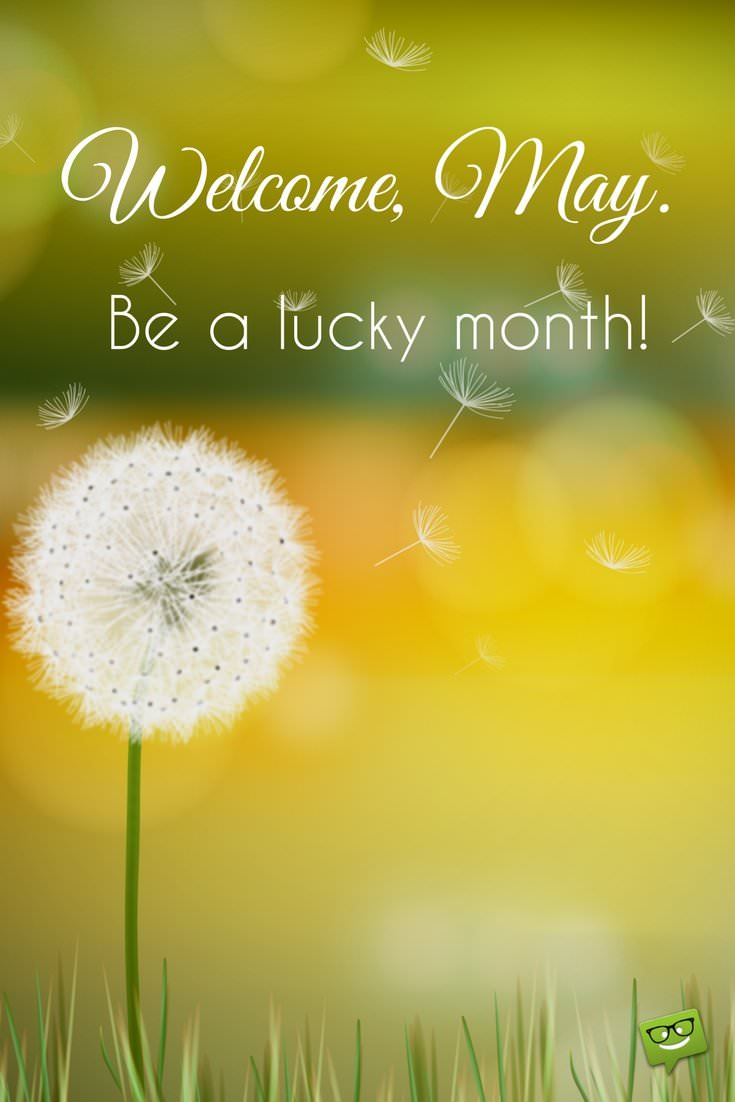 Hello, May   Quotes About Spring in Bloom - Part 2