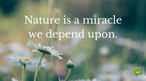 Nature is a miracle we depend upon.