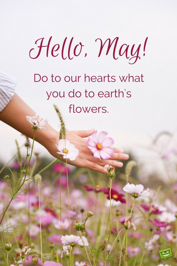 May Quotes Hello, May | Quotes About Spring in Bloom   Part 2 May Quotes
