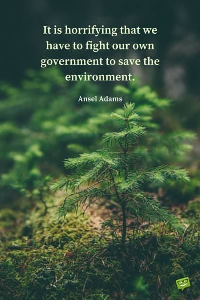 It is horrifying that we have to fight our own government to save the environment. Ansel Adams.