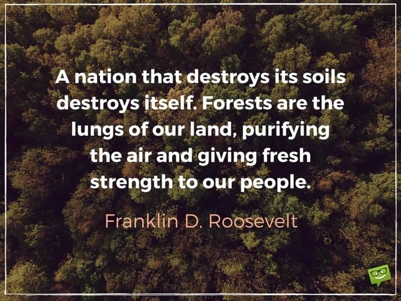 A nation that destroys its soils destroys itself. Forests are the lungs of our land, purifying the air and giving fresh strength to our people. Franklin D. Roosevelt.