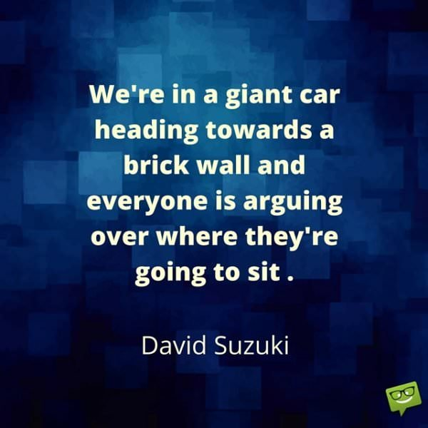 We're in a giant car heading towards a brick wall and everyone is arguing over where they're going to sit. David Suzuki.