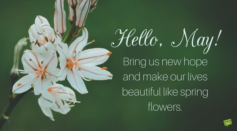 Hello, May. Bring us new hope and make our lives beautiful like spring flowers.