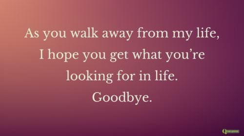 As you walk away from my life, I hope you get what you're looking for in life. Goodbye.