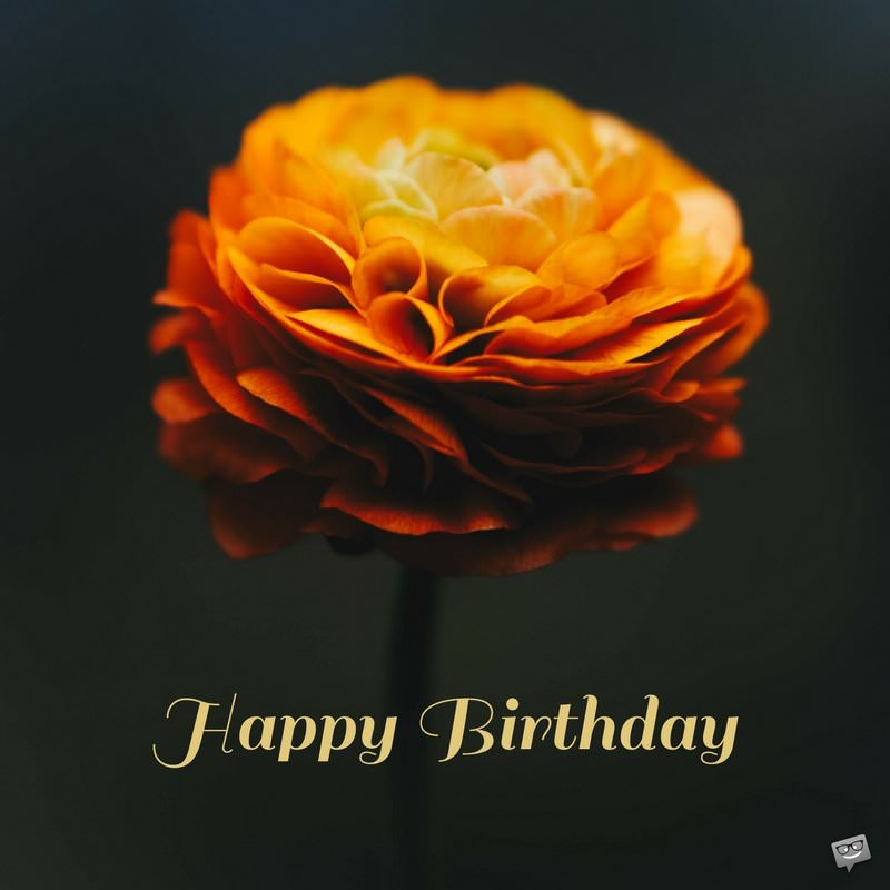 Free Birthday Images With Flowers