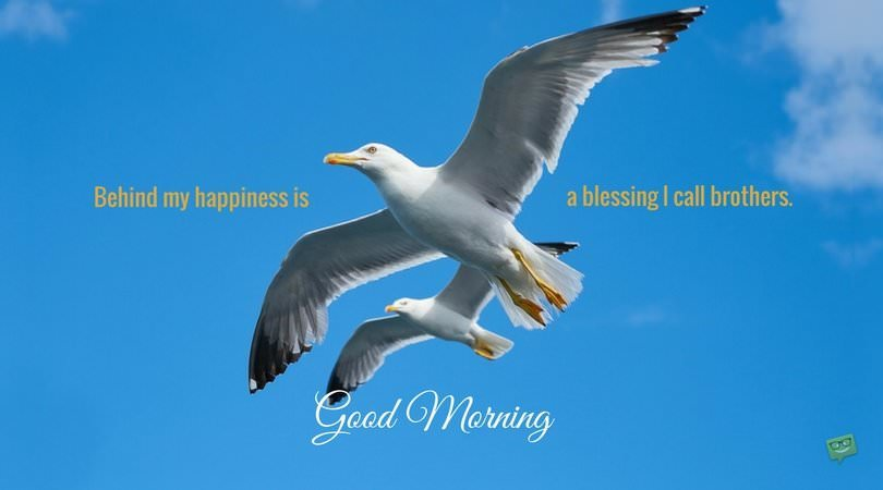 Good morning. Behind my happiness is a blessing I call brothers.