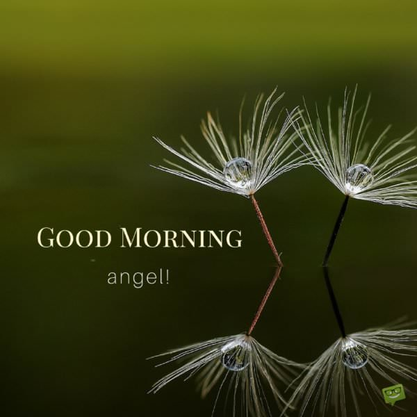 Good Morning, angel!