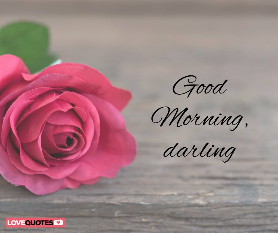 Good Morning Darling Pics : Of the most popular good morning quotes for your love