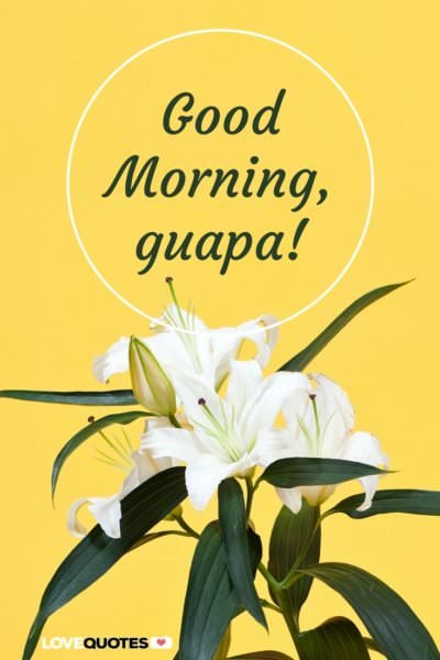 Good Morning, guapa!