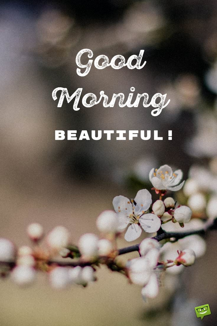 Good Morning Beautiful Pictures : Of the most popular good morning quotes for your love