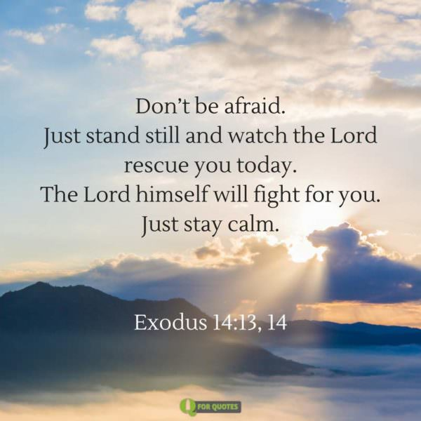 Don't be afraid Just stand still and watch the Lord rescue you today The Lord himself will fight for you Just stay calm. Exodus 14:13.