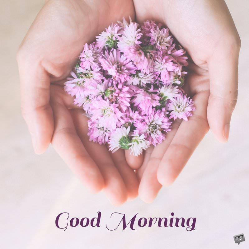 Have A Beautiful Day Good Morning Quotes On Pictures