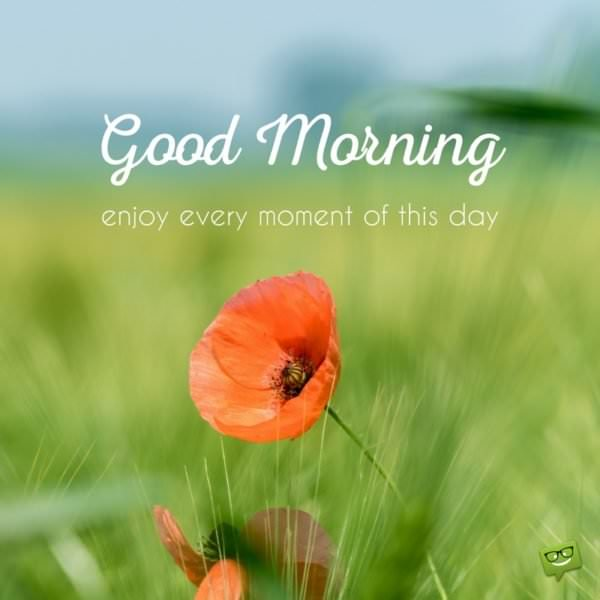 Good morning. Enjoy every moment of this day.