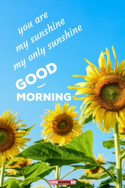 You are my sunshine, my only sunshine! Good morning.
