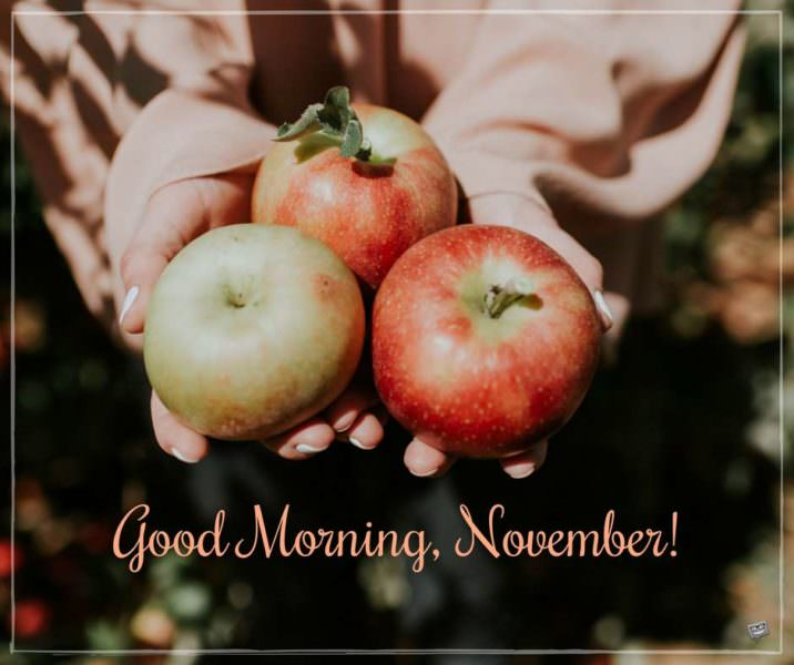 Good Morning, November!